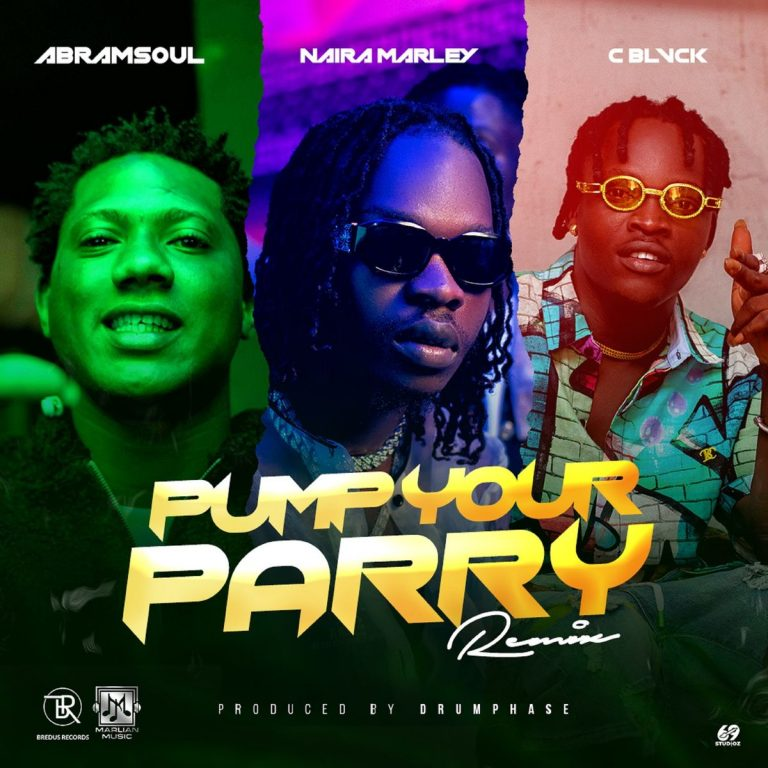 Abramsoul ft. Naira Marley, C Blvck - Pump Your Parry (Remix)  MP3 Download